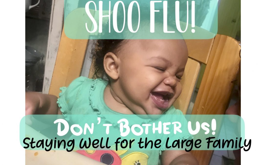 Shoo Flu! Don't Bother Us!