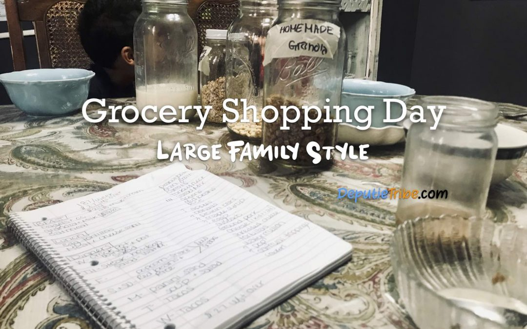 Grocery Shopping Large Family Style