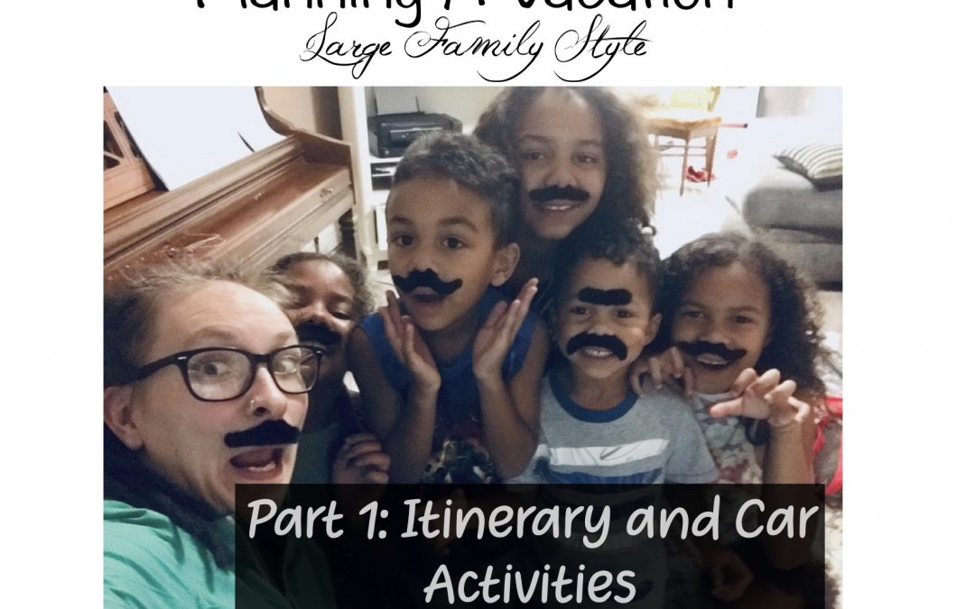 Planning a Vacation Large Family Style ~ Part 1 Itinerary and Car Activities