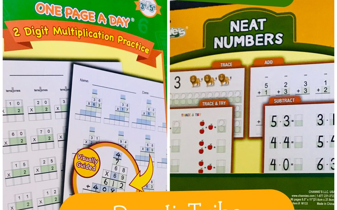Channie's Visual Handwriting & Math Workbooks Review