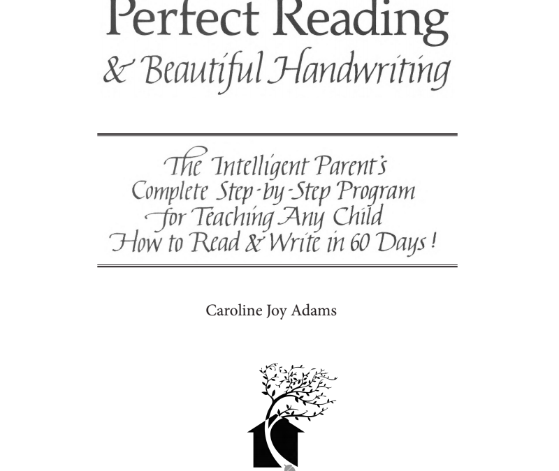 Perfect Reading, Beautiful Handwriting ebook Review